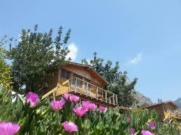 Olive Garden In Little Rock by Holiday Park Olive Garden Kabak Faralya Turkey Booking Com