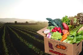 fruit delivered to home farm fresh to you home page