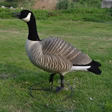2018 geese flocking simulation animal photography props home