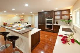 Lobkovich Kitchen Designs by Cleanliness On Transitional Kitchen Design Amazing Home Decor