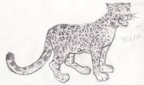 zoo sketch jaguar by pezsays on deviantart