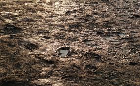 ground texture mud dirt puddle