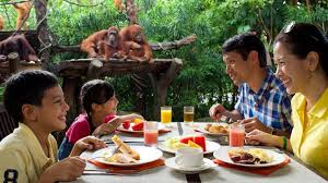 three day family guide to singapore visit singapore