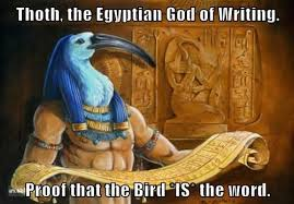 Egyptian Memes - thoth the egyptian god of writing proof that the bird is the