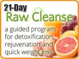the garden diet 21 day cleanse