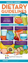 best 25 gastric sleeve diet ideas on pinterest gastric sleeve