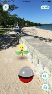 pokemon gotta catch em all in charlevoix header 77968 38925 png