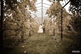photographers in utah wadley historic farm wedding jon dezember photography