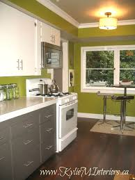 Green Kitchen Plain Dark Green Kitchen Cabinets With White Counters Wood Floors