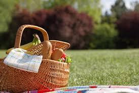 picnic essentials for national picnic month fretz rv blog
