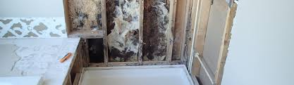 Mold In Bathroom Shower Mold In The Bathroom Shower Causes U0026 Cleanup Strategies Environix
