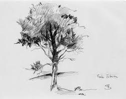 basic tree sketch by doodleopolis on deviantart