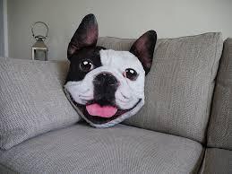 Cushion Pets Pet Faces Pug Velour Cushion Amazon Co Uk Pet Supplies