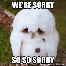We Re Sorry Meme - we re sorry so so sorry sad owl baby meme generator