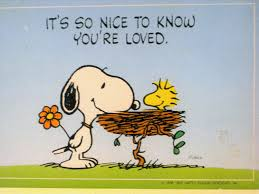 a charlie brown thanksgiving vhs 619 best snoopy cartoon characters images on pinterest peanuts