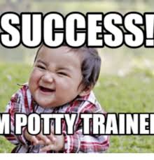 Success Meme - success mipotty trained autonomy vs shame and doubt meme on me me