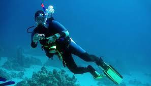 Arkansas snorkeling images Frogdogz dive travel home