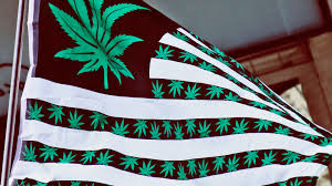 Pot Flag Which States Will Legalize Cannabis In 2017 International