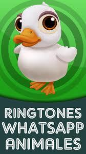 imagenes de animales whatsapp ringtones whatsapp animales descargar apps gratis