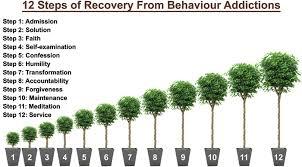 12 step behavioral addiction