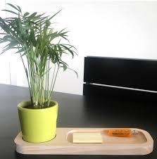 plante d駱olluante bureau plante publicitaire et bien être au travail objet publicitaire et