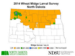 Map North Dakota Nd Wheat Midge Risk Maps U2014 Extension Entomology