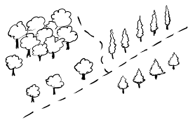 how to draw simple trees on a map fantastic maps