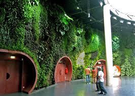 vertical gardens 15 incredible vertical gardens around the world twistedsifter