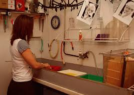 darkroom enlarger