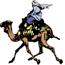 camel gif