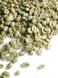 coffee green bean