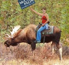 sarah palin moose picture