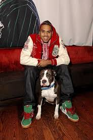 celebrities and there dogs
