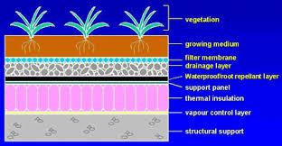 grass roof construction