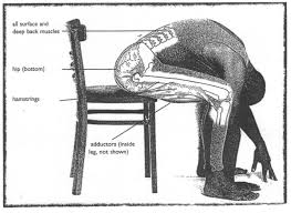 back muscle stretching