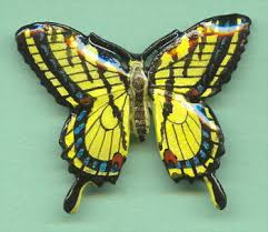 butterfly tiger