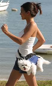 celebrity dog owners
