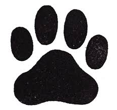 paw print photos