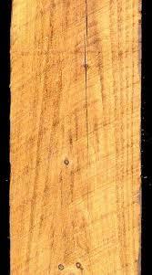 minwax golden oak