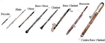 a woodwind instrument