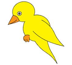 cartoon pictures of birds