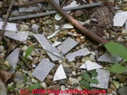 cementitious siding