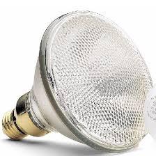 quartz halogen bulbs