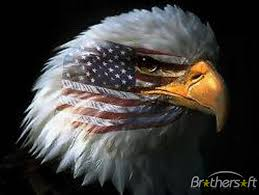 eagle and flag pictures