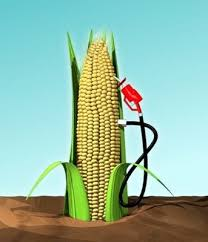 picture of ethanol