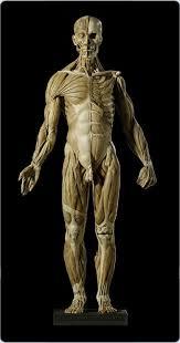 human figure sculpture