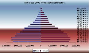 population pyramid of south africa
