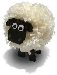 wool pom pom