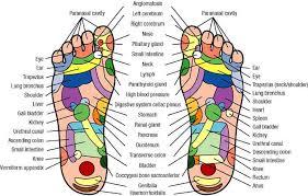 body foot