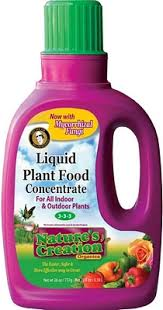 food concentrate